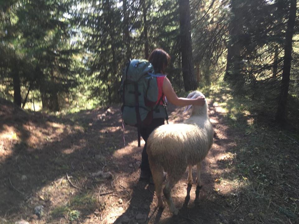 Randonnée en Dolomites bis (15)