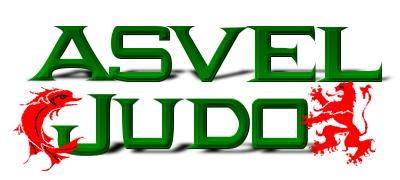 Logo asvel judo