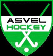 Logo hockey copie