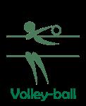 Volley2 copie